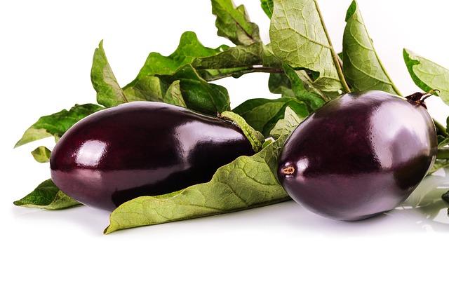 plants-aubergine-emeraude-plants